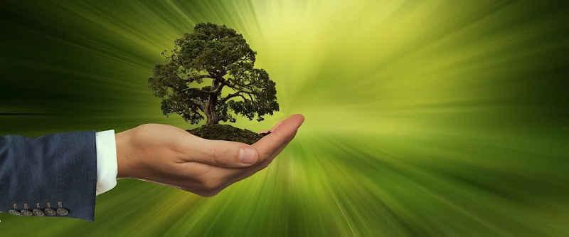 sostenibilità e responsabilità sociale delle imprese