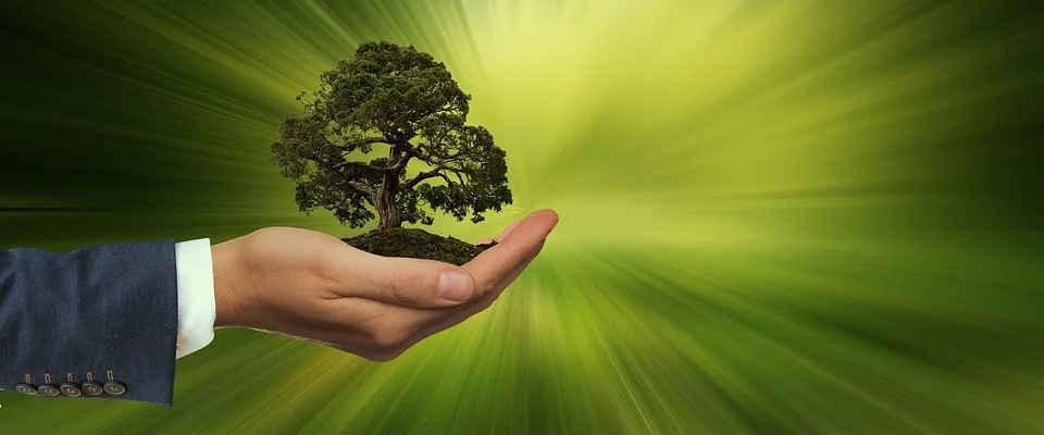 Servizi di finanza sostenibile in Svizzera