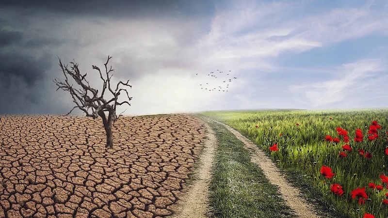 Attivisti per il clima a Berna